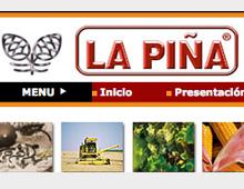 Diseño Web La Piña