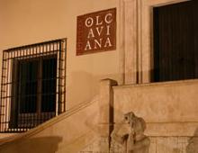 Stand Bodega Olcaviana
